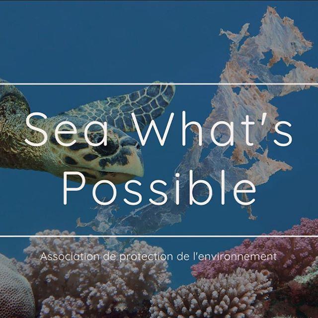 Sea What's Possible - Association de protection de l'environnement